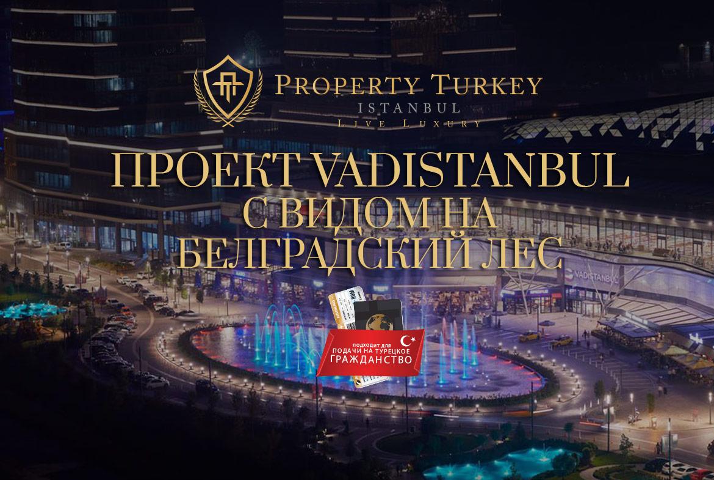 Проект-Vadistanbul-с-видом-на-Белградский-лес.jpg